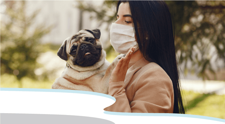 If You're Feeling Sick, Socially Distance from Your Pets